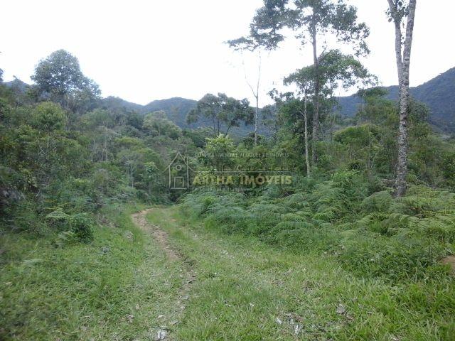 Lindo sitio com 30 hectares, 3 nascentes riacho muita area em pasto, mata preservada, ótima topografia, 500m de estrada dentro da propriedade totalmente reservado